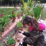 Visita guidata presso il Real Orto Botanico di Napoli